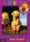 Bamses Billedbog 43 - Lys I Lygten Og Skattejagt - DVD