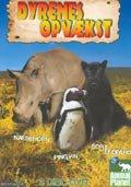 animal planet - dyrenes opvækst - DVD