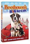 beethovens sjette - DVD