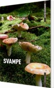 danmarks natur svampe - bog