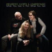 megabody og lewandowski - hjorth - what you see is not what you get - cd