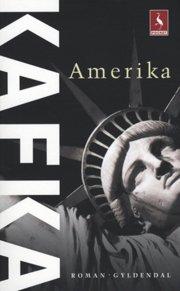 amerika - bog