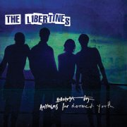 the libertines - anthems for doomed youth - Vinyl / LP