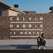 calvin harris - 18 months - Vinyl / LP