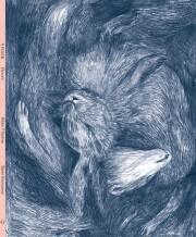 9 piger - hesten - bog