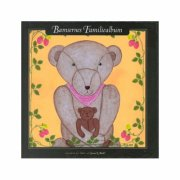 bamsernes familiealbum - bog