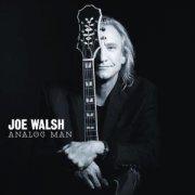 joe walsh - analog man - cd