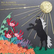 big business - command your weather - cd