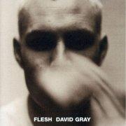 david gray - flesh - cd