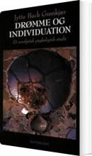 drømme og individuation - bog