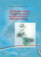 effektundersøgelse af psykodynamisk miljøterapeutisk døgnbehandling - bog