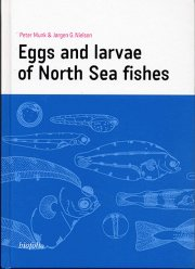 eggs and larvae of north sea fishes - bog