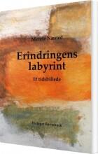 erindringens labyrint - bog
