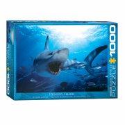 puslespil - eurographics - haj - 1000 brikker - Brætspil