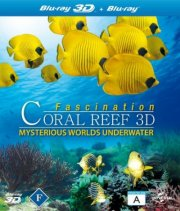 fascination coral reef - 3d mysterious worlds under water - Blu-Ray