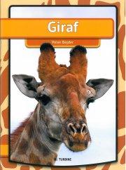 giraf - bog