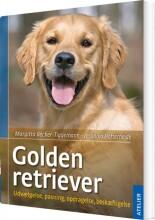 golden retriever - bog