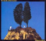 elvis costello - goodbye cruel world - Vinyl / LP