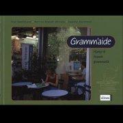 gramm'aide - fransk grammatik - bog