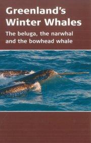 greenland´s winter whales - bog