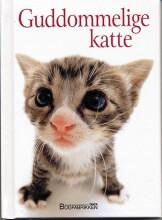 guddommelige katte - bog