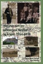 historier om en sønderjysk familie og krigen 1914-1918 - bog