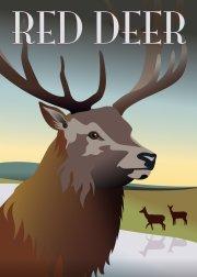 hoei denmark plakat med hjort - ping pong - 50 x 70 cm - Til Boligen