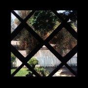 chris schlarb - psychic temple iii - Vinyl / LP