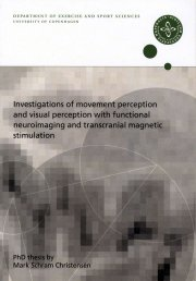 investigations of movement perception and visual perception with functional neuroimaging and transcranial magnetic stimulation - bog