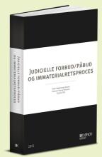 judicielle forbud/påbud og immaterialretsproces - bog