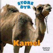 kamel - bog
