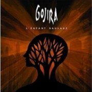 l'enfant sauvage - gojira - limited edition cd+dvd - DVD
