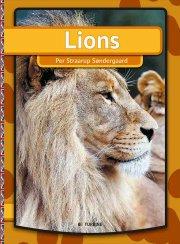 lions - bog