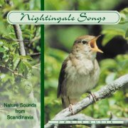 nature sounds from scandinavia - nightingale songs - cd