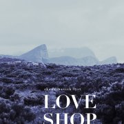love shop - skandinavisk lyst - cd