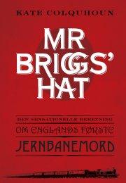 mr briggs' hat - bog