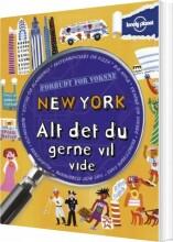 new york - alt du gerne vil vide - bog