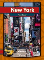 new york - bog