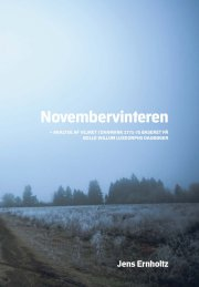 novembervinteren - bog