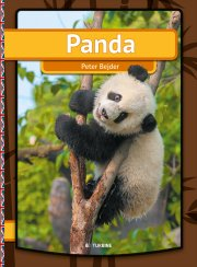 panda  - Engelsk