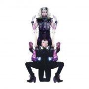 prince feat. 3rdeyegirl - plectrum electrum - Vinyl / LP