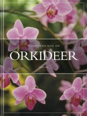 politikens bog om orkideer - bog