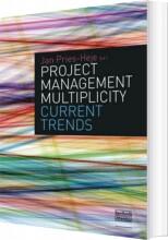 project management multiplicity - bog