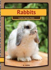 rabbits - bog