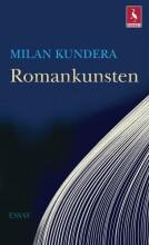 romankunsten - bog