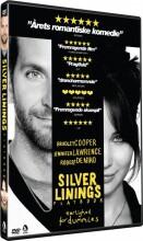 silver linings playbook - DVD