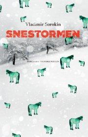 snestormen - bog