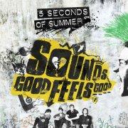 5 seconds of summer - sounds good feels good - Vinyl / LP