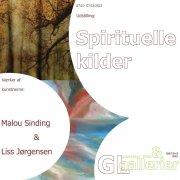 spirituelle kilder - bog