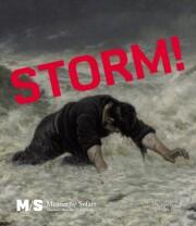 storm! - bog